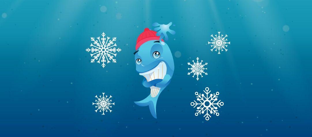 BlueFit Swimming Winter Break